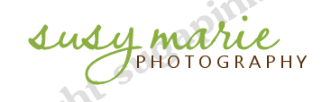 Elegant Photography Pre-Made Logo Design-premade photography logo, upscale premade photography logo design